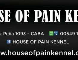 House of Pain Kennel