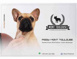 Mont Toulouse