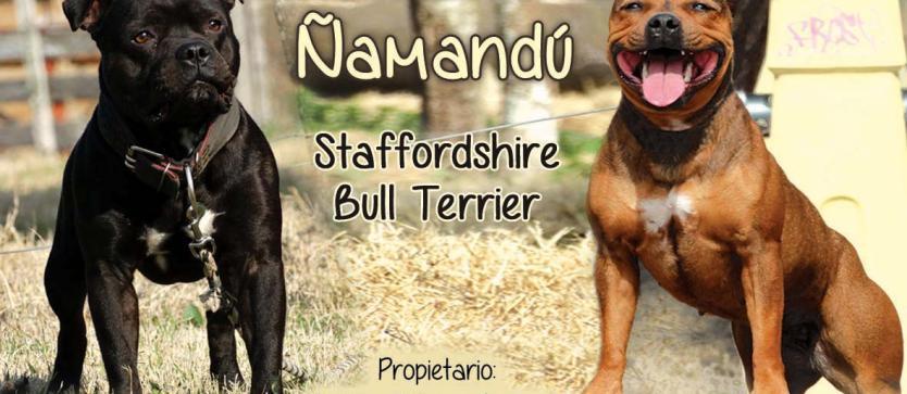 Criadero Namandu